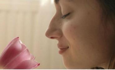 Fin de un mito: el olfato humano es tan eficaz como el de los perros