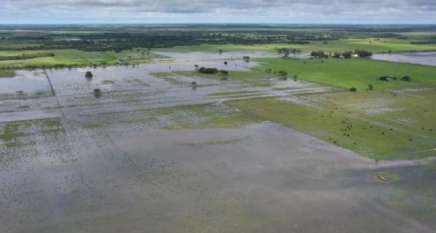 El Gobierno declaró la emergencia agropecuaria en Formosa, Córdoba y Chaco