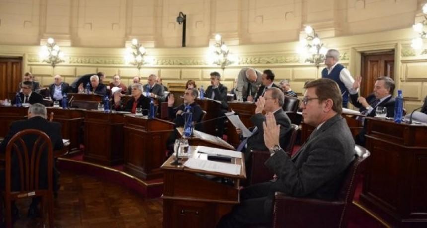 Crisis económica Los senadores buscan una ayuda integral para los municipios y comunas