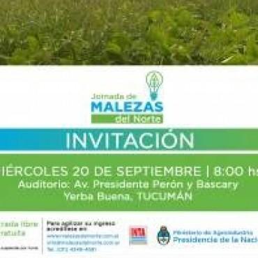 Tucumán se prepara para la Jornada de Malezas del Norte